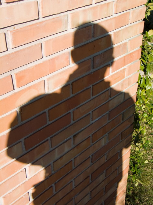 casa, self-shadow
